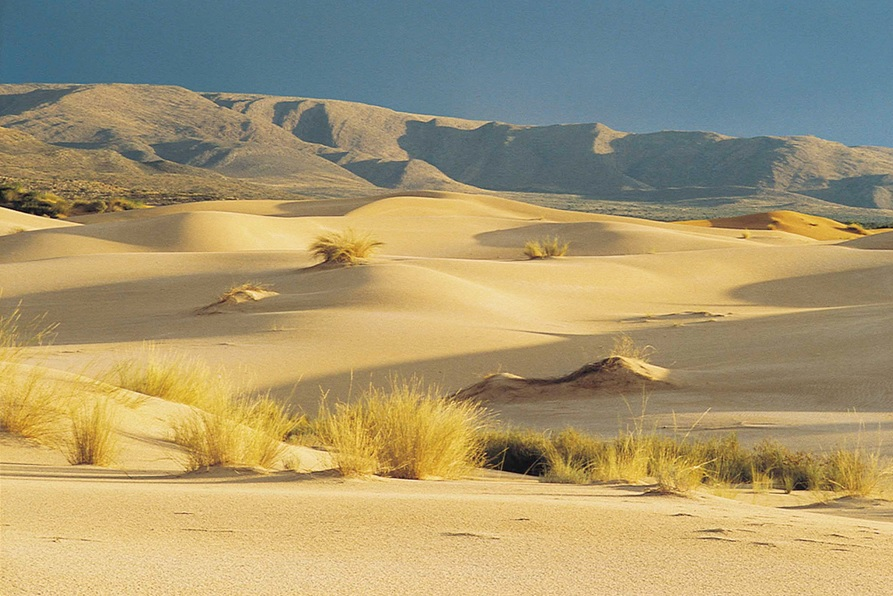 Desert landscape in South Africa